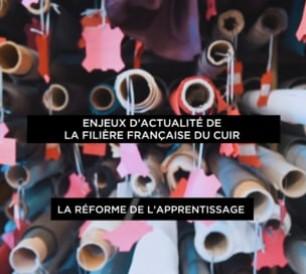 enjeux_dactualite_de_la_filiere_francaise_du_cuir_-_reforme_de_lapprentissage