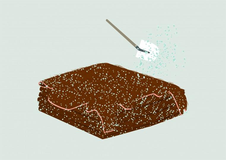 Le salage ou conservation des peaux.