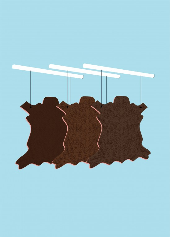 Les peaux sont exposées à l'air libre ou en étuve afin de permettre leur déshydratation, avant pliage et stockage.