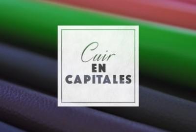 cuir_en_capitales_episode_5_-_focus_sur_la_formation_ingenieur_cuir_de_litech